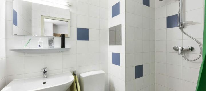 bathroom | Student dorm Tendlergasse 1090  Vienna