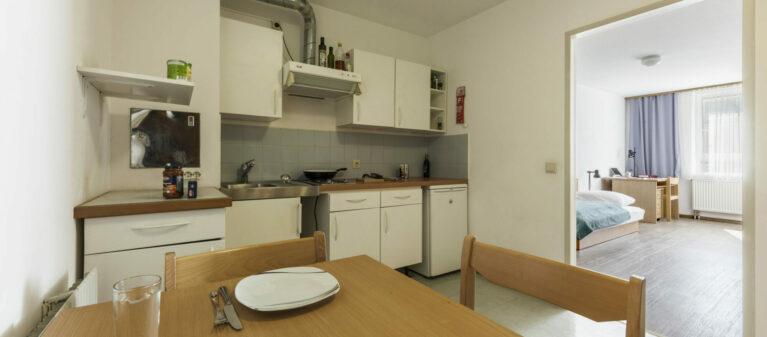 kitchen in room | House Handelskai 1200  Vienna